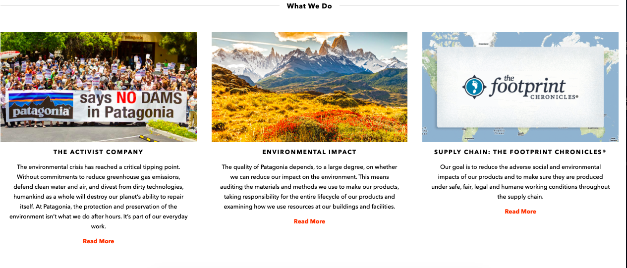 Patagonia's sustainability page.