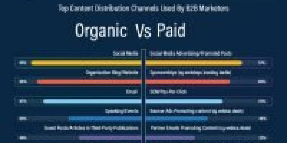B2B Content Marketing Benchmarks, Budgets and Trends 2020 [Infographic]