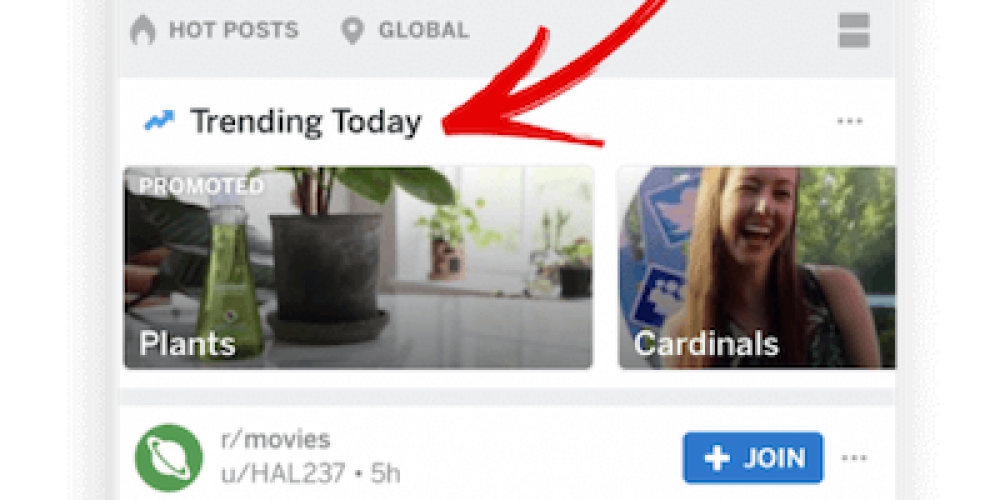 Meet Reddit's New Trending Takeover: Get Maximum Visibility for Your Brand & Message