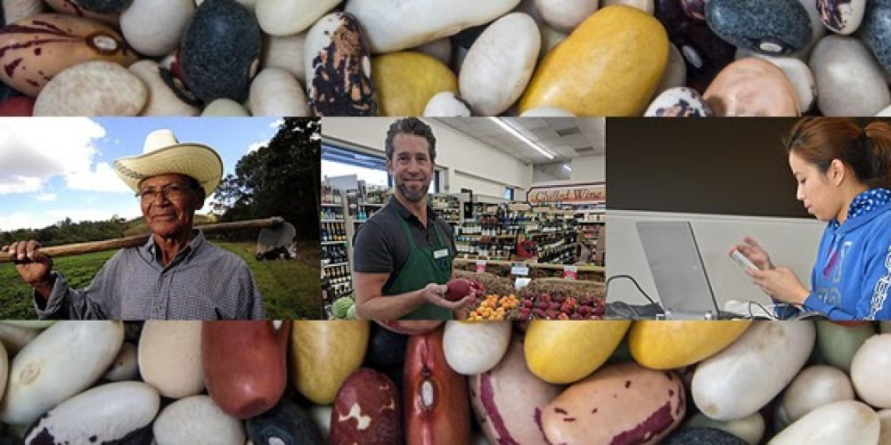 Mapping Local Essentials: Being the Business that Grows, Sells, or Markets the Beans