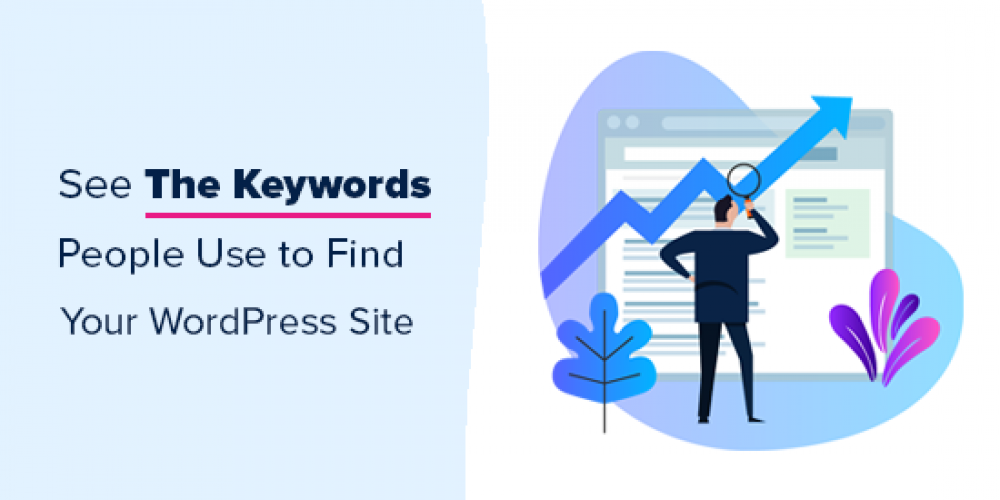 How to See the Keywords People Use to Find Your WordPress Site