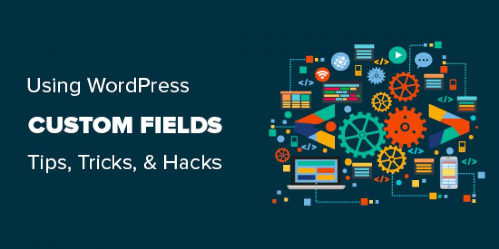 WordPress Custom Fields 101: Tips, Tricks, and Hacks
