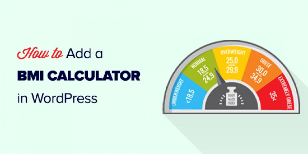 How to Add a BMI Calculator in WordPress (Step by Step)