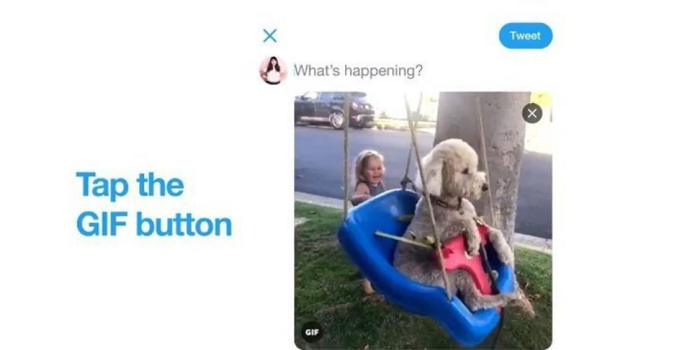 You Can Now Convert Your iOS Live Photos into GIFs on Twitter