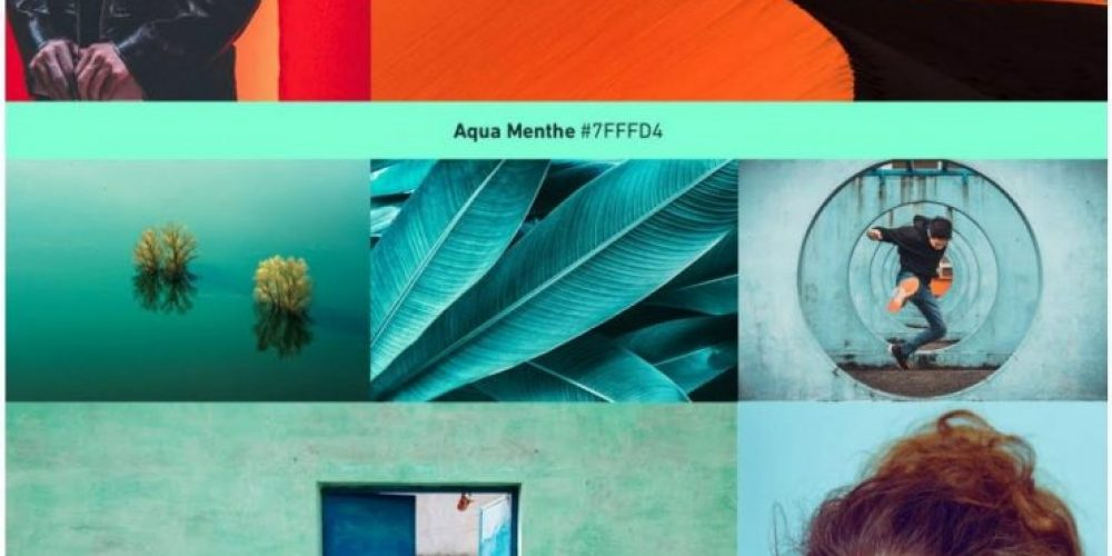 Shutterstock Publishes 2020 Color Trends Report [Infographic]