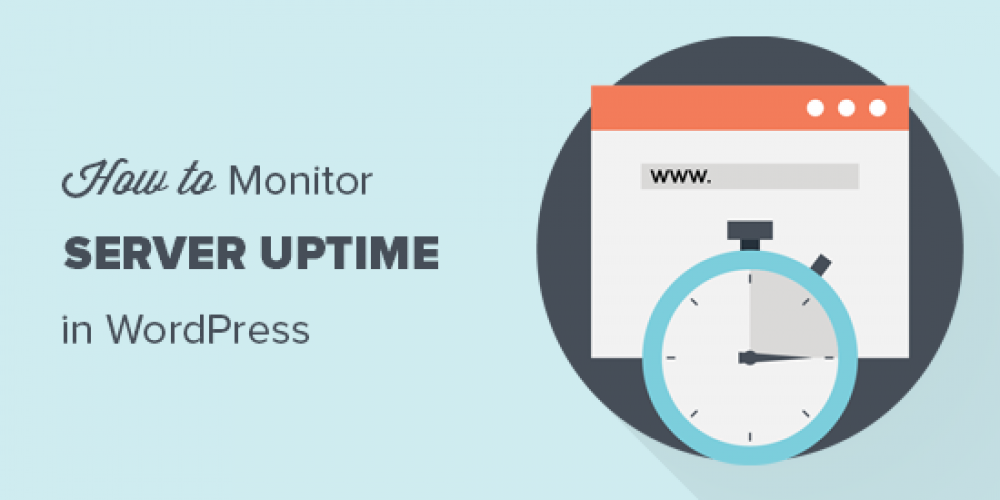 How to Monitor Your WordPress Website Server Uptime (Easy Way)