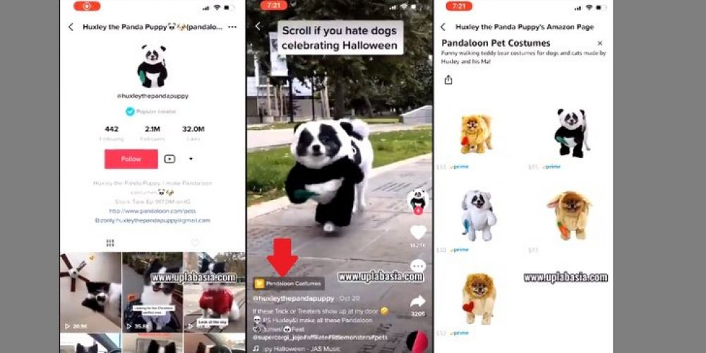 TikTok Tests Social Commerce Links in Videos