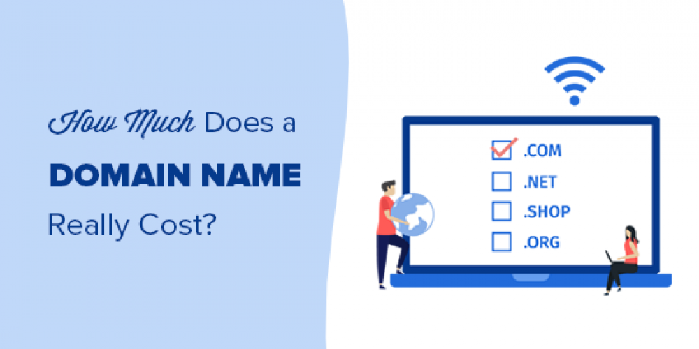 How Much Does a Domain Name Really Cost? (Expert Answer)